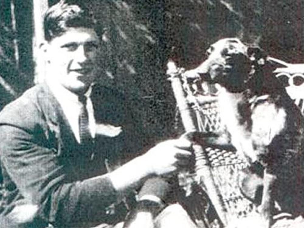 Bluey, el perro más viejo de la historia, según el Libro Guinness de los records