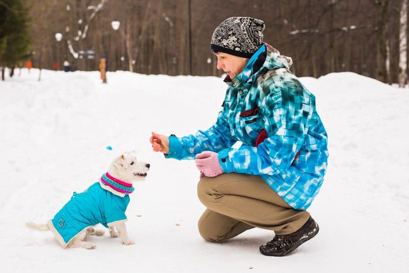 Mujer con perro abrigado en la nieve