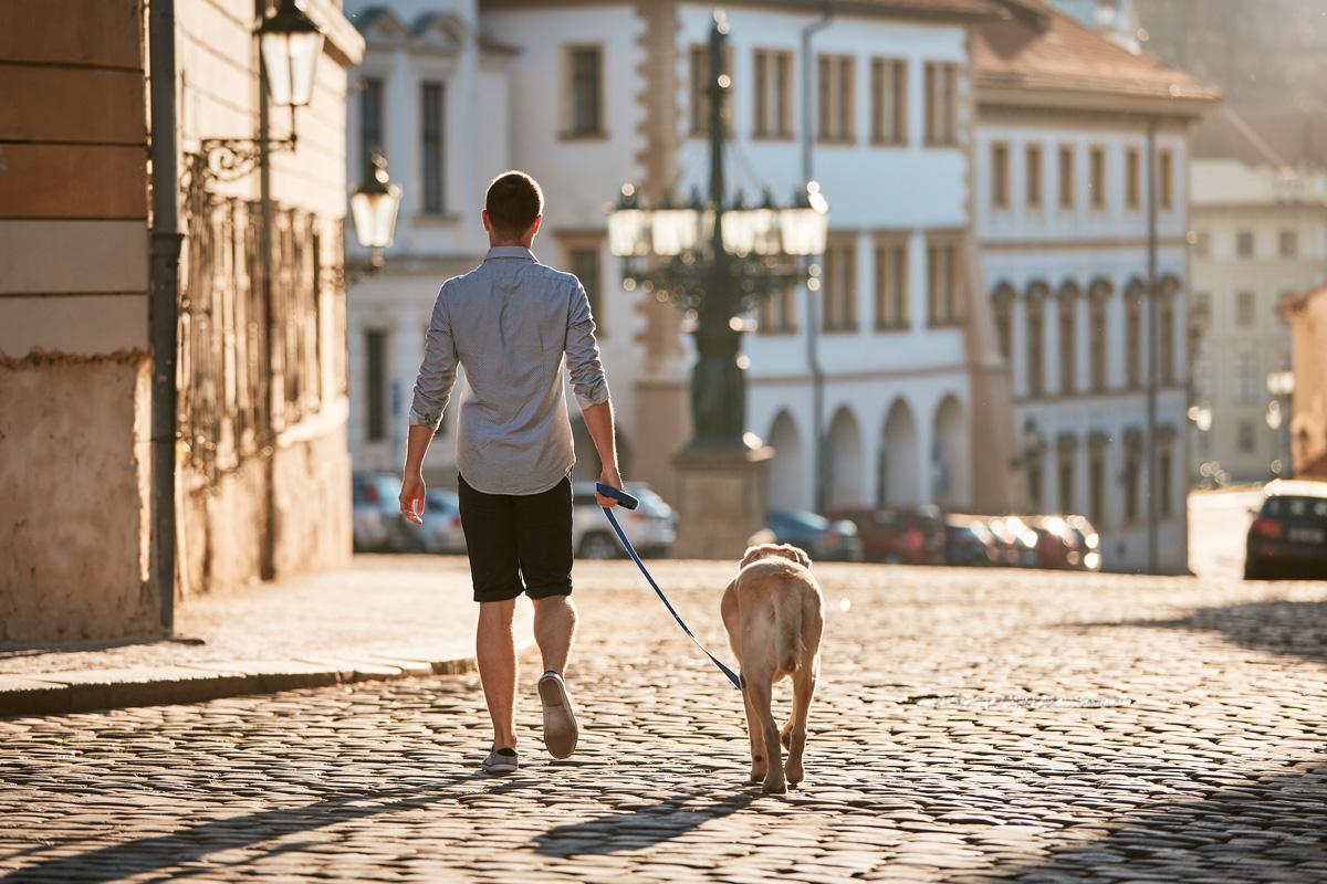 Chico paseando a un perro por una calle vacia