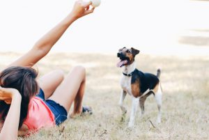 perro con dueña jugando en el campo