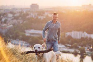 Dueño y perro de paseo con palo en la boca lejos de la ciudad
