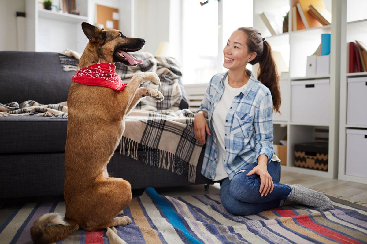 Mujer enseñando a perro