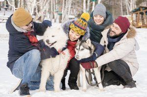 jugando con perro en la nieve
