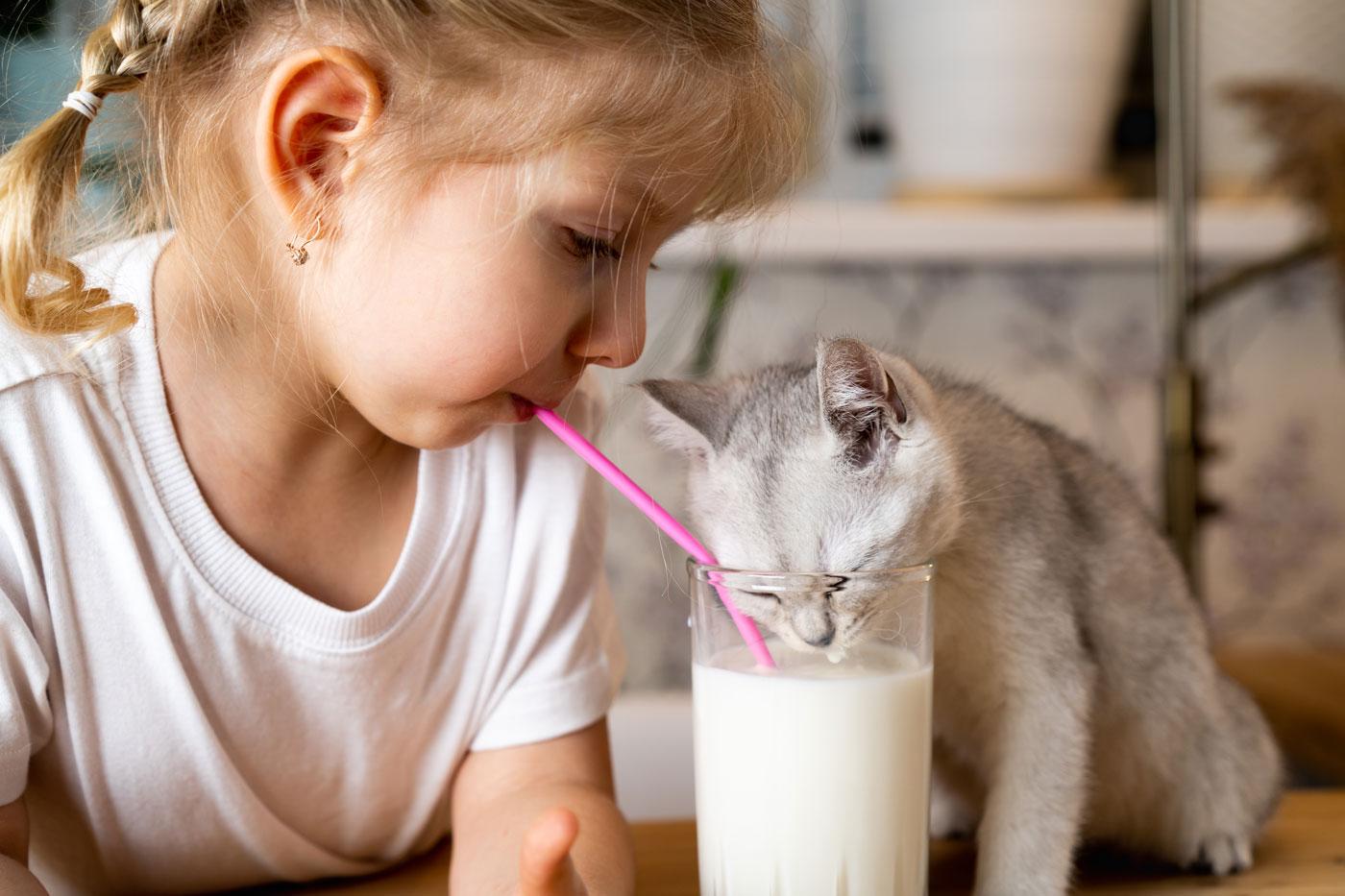 niña y gatito bebiendo leche